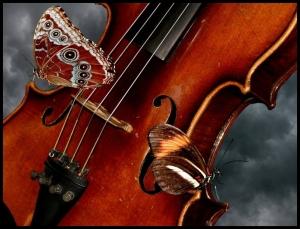 mariposa y violín